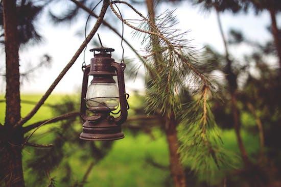 Gartenbeleuchtung in Tipps und Infos: Beleuchtung auf der Terrasse und im Garten